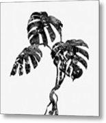 Monstera Leaf-black Metal Print