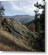 Montana - Wilderness Metal Print