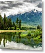 Montana Beauty Metal Print