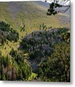 Montana Call Of The Wild Metal Print