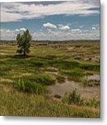 Montana Country And Tree Metal Print
