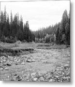 Montana Creek Bend Metal Print