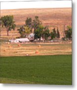 Montana Harvest Time Metal Print