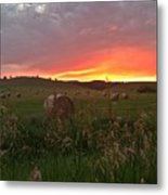Montana Hayfield Sunset Metal Print