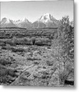 Montana Mountainscape Metal Print