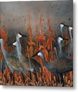 Monte Vista Sandhill Cranes Metal Print