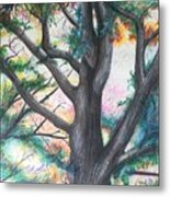 Monticello Tree Metal Print