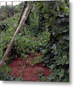 Monticello Vegetable Garden  Tee Pee Metal Print