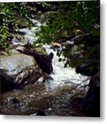 Montreat Creek North Carolina Metal Print
