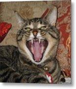 Monty's Yawn Metal Print