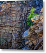 Monument Cove I Metal Print