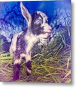 Moo Cow Love Grass Metal Print