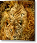 Moods Of Africa - Lions 2 Metal Print