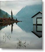 Moody Reflection Metal Print