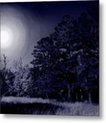 Moon And Dreams Metal Print by Nina Fosdick