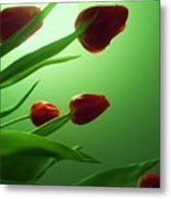 Moon  And Tulips Metal Print