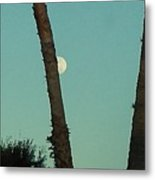 Moon Hiding Behind The Palm Metal Print