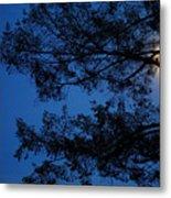 Moon Hiding In The Tree Metal Print