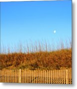 Moon In The Morning Metal Print