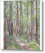 Moon Lake Pathway Metal Print