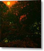 Moon Of Dark Night Metal Print