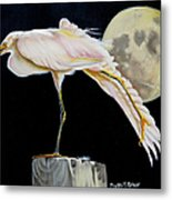 Moon Over Mississippi A Snowy Egrets Perspective Metal Print