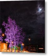 Moonlight And Colored Trees Metal Print