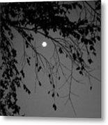 Moonlight - B And W Metal Print