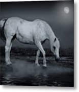 Moonlight Shadow Metal Print