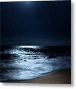 Moonlit Coconut Metal Print