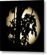 Moonlit Leaves No 1 Metal Print