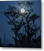Moonrise Over Wetlands Metal Print