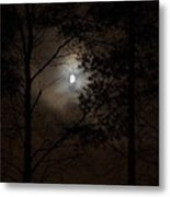 Moonshine 01 Metal Print