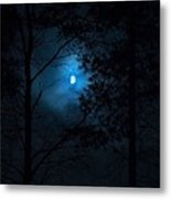 Moonshine 02 Metal Print