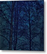Moonshine 12 Blue Sky Metal Print