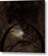 Moonshine 14 The Trees Metal Print