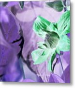 Moonwalk Clematis Metal Print