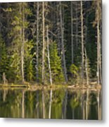 Moose Creek Reservoir Metal Print