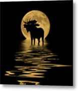 Moose In The Moonlight Metal Print