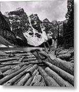Moraine Lake Driftwood No 2 Metal Print