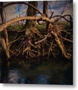 More Roots In Creek Metal Print