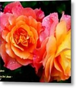 More Roses For Anne Catus 1 No. 1 H A Metal Print