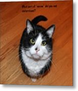 More Words From  Teddy The Ninja Cat Metal Print