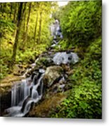 Morning At Amicalola Falls Metal Print