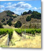 Morning At Mosby Vineyards Metal Print