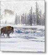Morning Bison 4  7912-4 Metal Print