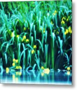 Morning By The Pond Metal Print
