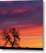 Morning Country Sky Metal Print