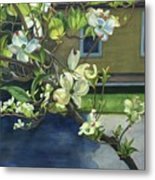 Morning Dogwood Metal Print