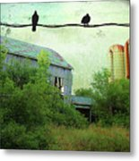 Morning Doves Metal Print